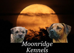 Moonridge and Mossrose Kennels Logo